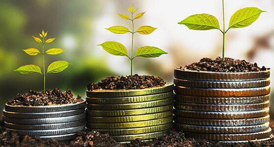 image_financement